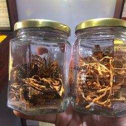 Đông trùng hạ thảo nhộng khô 10 con giá sỉ