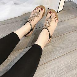 Giày sandal hoa siêu kute giá sỉ