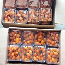 Cà Chua Trái Cây Đà Lạt 100 Organic giá sỉ giá bán buôn giá sỉ