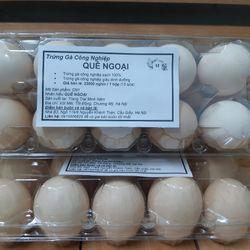 Trứng Gà Đỏ giá sỉ