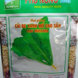 Hạt giống cải bẹ xanh mỡ Phú Nông giá sỉ
