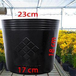 sỉ 800 Chậu nhựa trồng cây C9A 23x18x17 trồng cây ăn trái và hoa-77104
