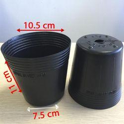 sỉ 2.500 cái Chậu nhựa ươm cây C5 10.5x11x7.5 nhựa pe dẻo bền -77202