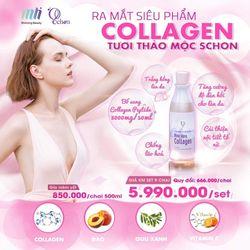 Nước uống collagen tươi Schon giá sỉ