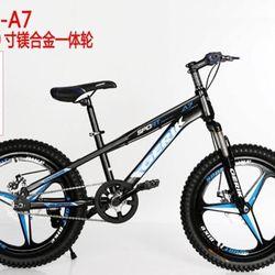 Xe đạp Gẻick size 20 giá sỉ
