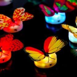 Bươm bướm có đèn led dán tường đủ màu xinh xắn