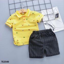 Bộ áo thun cổ bẻ+ quần short kẻ mềm cho bé trai TE2540 giá sỉ